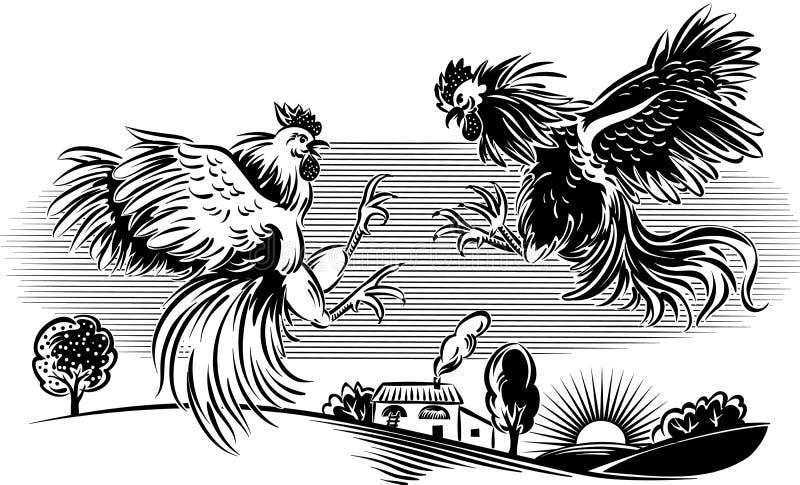 Twee hanen in een strijd vector illustratie