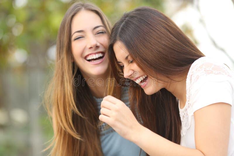 Twee het gelukkige vrouwenvrienden lachen royalty-vrije stock foto