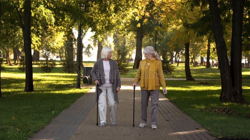 Twee het glimlachen het oude vrouwen spreken die in park lopen, verpleeghuis voor bejaarden, vrije tijd stock foto's