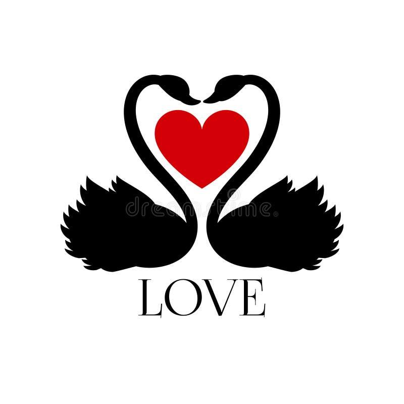 Twee het houden van zwanen met hart op witte achtergrond royalty-vrije illustratie