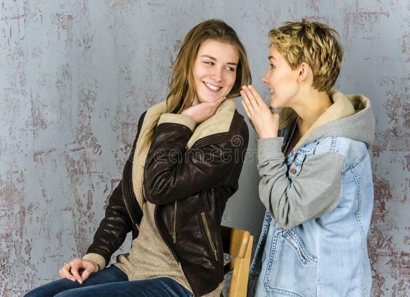 Twee het jonge vrouwenvrienden spreken stock fotografie