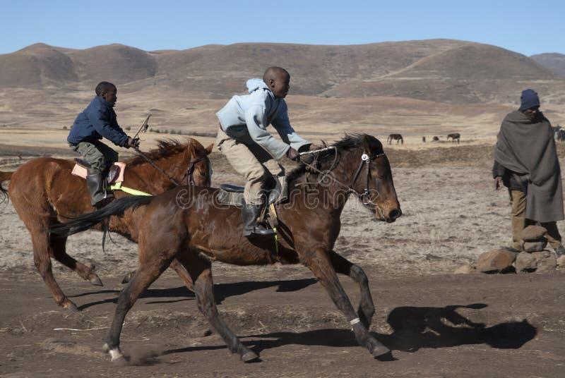 Twee het rennen Basotho poneys royalty-vrije stock foto's