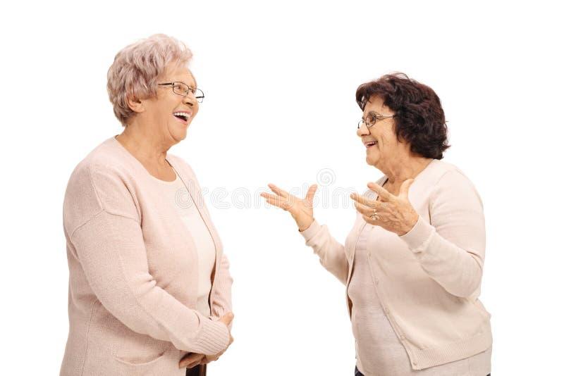 Twee het vrolijke bejaarden spreken stock afbeelding