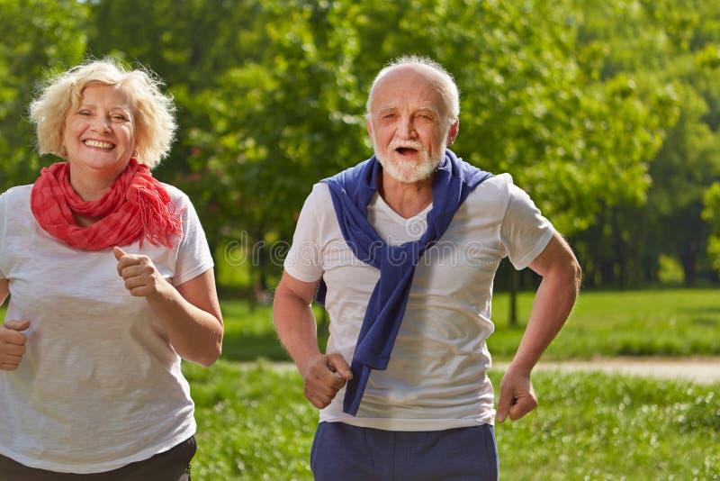 Twee hogere mensen die in een park aanstoten royalty-vrije stock afbeelding