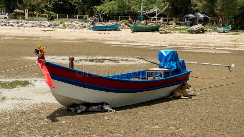 Twee honden die door een vissersboot in de schaduw zijn gesteld op Pak Nam Pram, Thailand stock fotografie