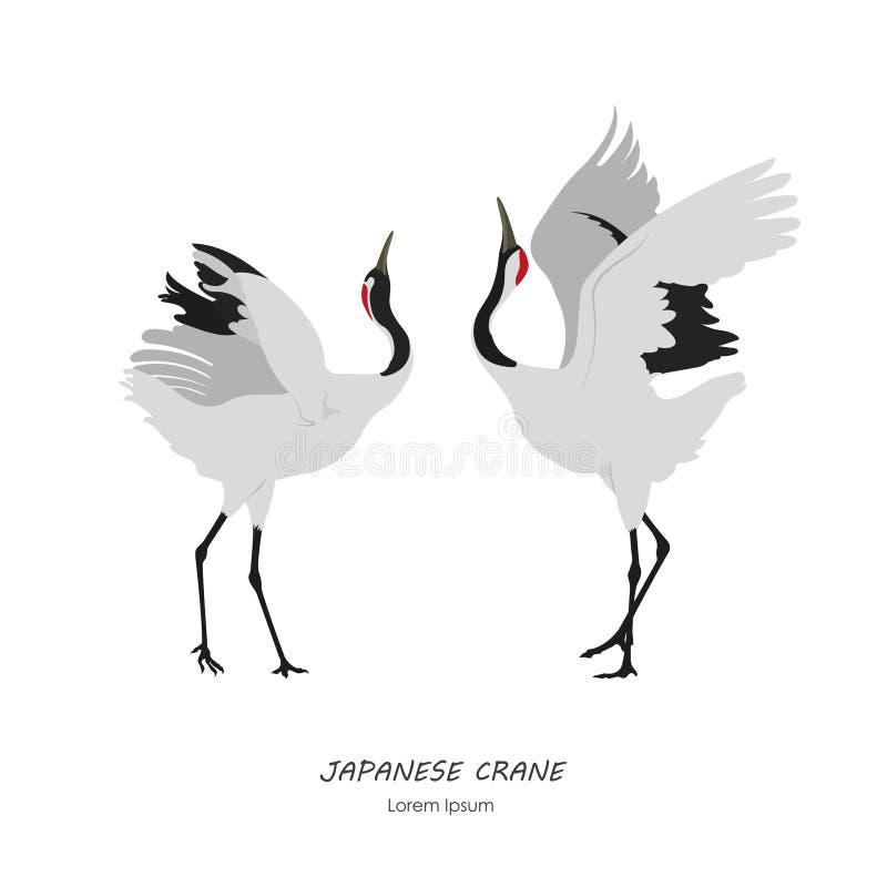 Twee Japanse Kranen die op een witte achtergrond dansen vector illustratie
