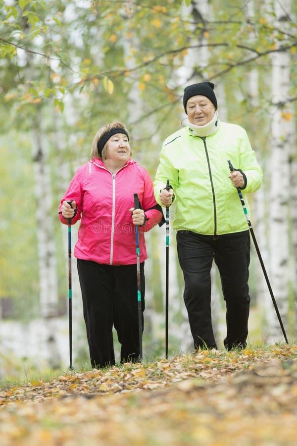 Twee jasje geklede bejaarden zijn betrokken bij het Skandinavische lopen in het park in off-road Wijd geschoten royalty-vrije stock fotografie
