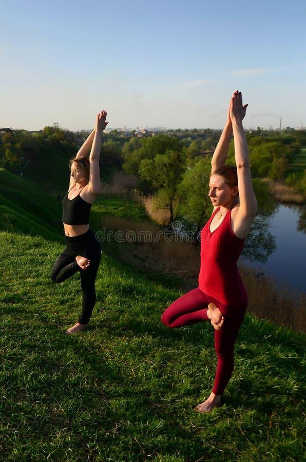 Twee jonge blonde meisjes in de praktijkyoga van sportenkostuums op p royalty-vrije stock foto's