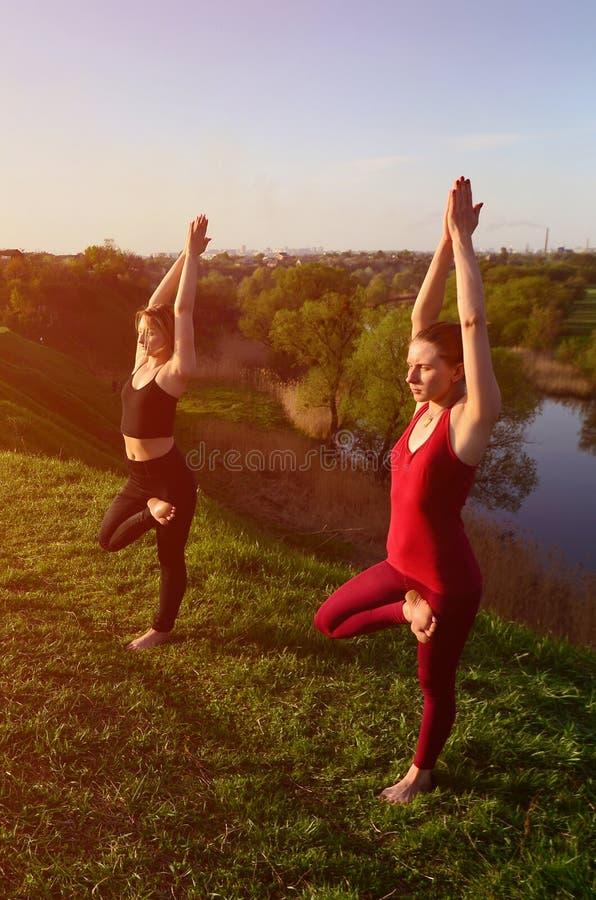 Twee jonge blonde meisjes in de praktijkyoga van sportenkostuums op p royalty-vrije stock foto