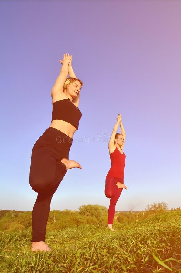 Twee jonge blonde meisjes in sporten past praktijkyoga op een schilderachtige groene heuvel aan stock fotografie