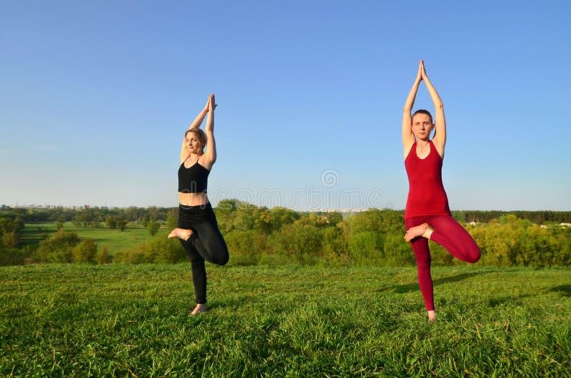 Twee jonge blonde meisjes in sporten past praktijkyoga op een schilderachtige groene heuvel aan royalty-vrije stock afbeeldingen