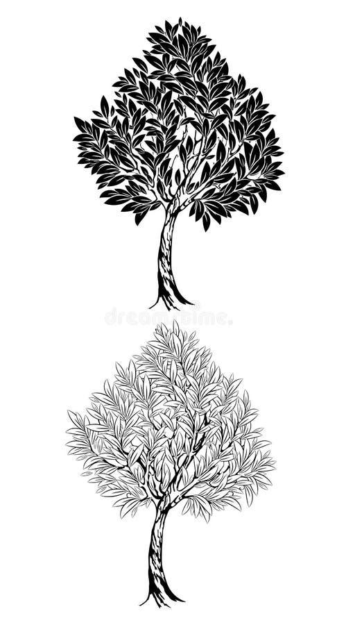 Twee jonge contourboom stock illustratie