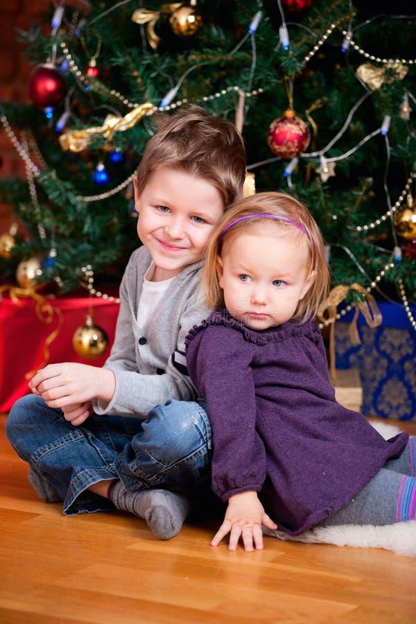 Twee jonge geitjes dichtbij Kerstboom stock afbeeldingen