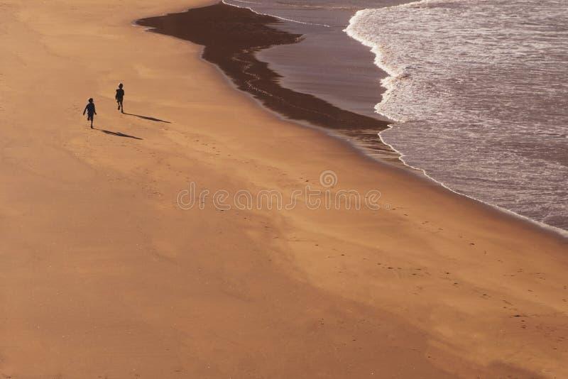 Twee jonge geitjes die bij strand lopen royalty-vrije stock afbeeldingen