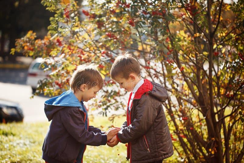 Twee jonge jongens in openlucht het glimlachen en lach Conceptenvriendschap stock fotografie