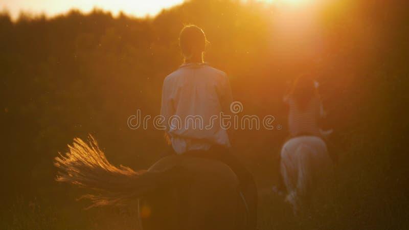 Twee jonge meisjes die paarden in zonsondergang berijden royalty-vrije stock fotografie