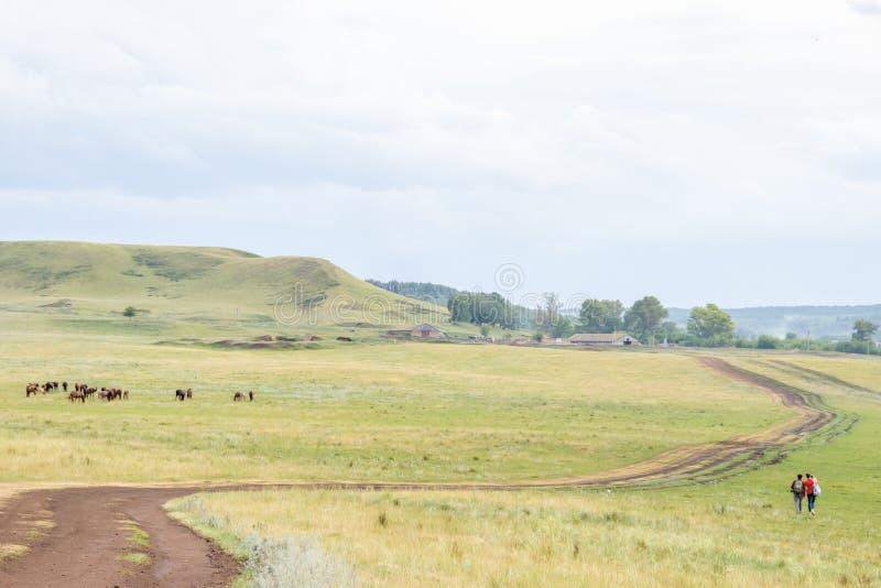 Twee jonge meisjes kleine cijfers met rugzakken op een landelijke weg Het weiland van het paardlandbouwbedrijf met merrie en veul royalty-vrije stock foto