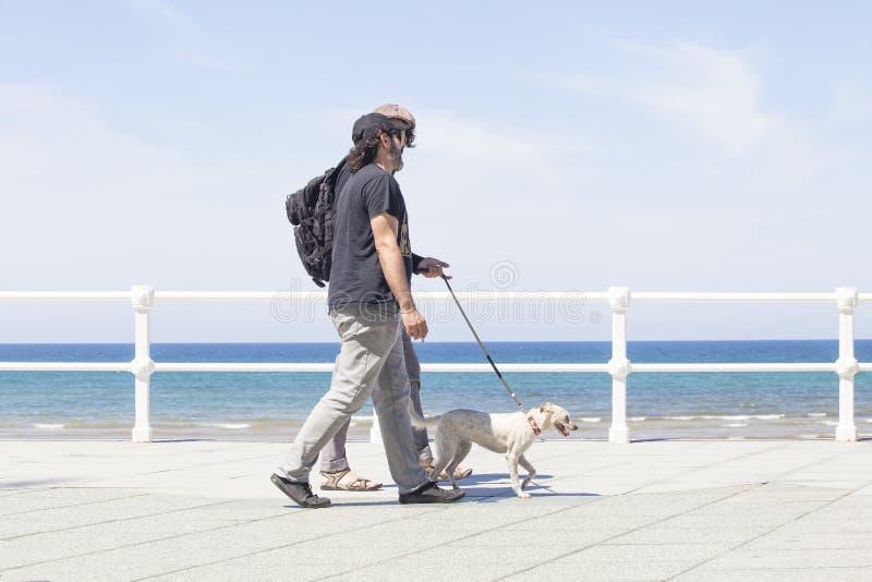 Twee jonge mensen en hond die op de bezige stoep van de stadsstraat lopen royalty-vrije stock fotografie
