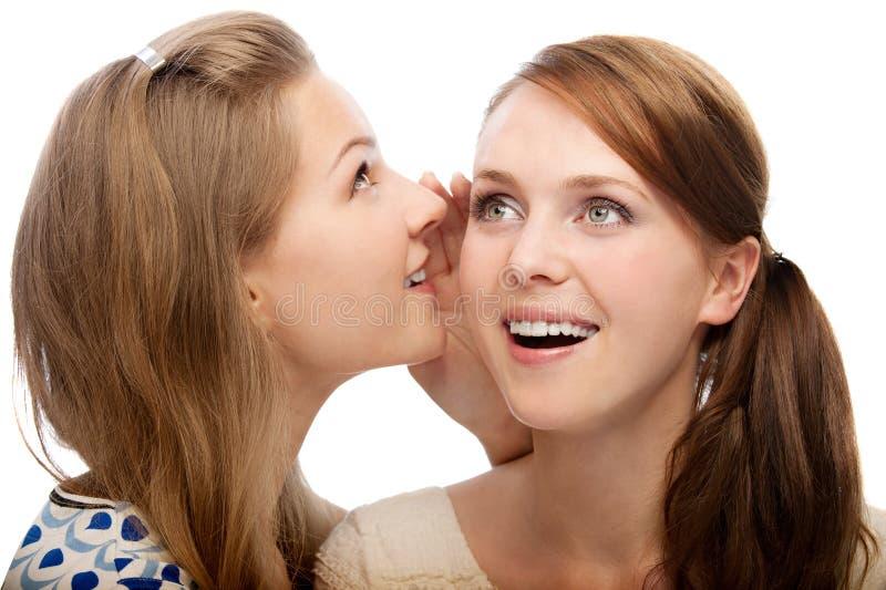 Twee jonge mooie vrouwen stock foto's