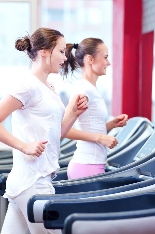 Twee jonge sportieve vrouwen die op machine in werking worden gesteld stock foto