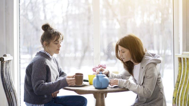 Twee jonge vrouwelijke vrienden die thee in een koffie drinken royalty-vrije stock afbeeldingen