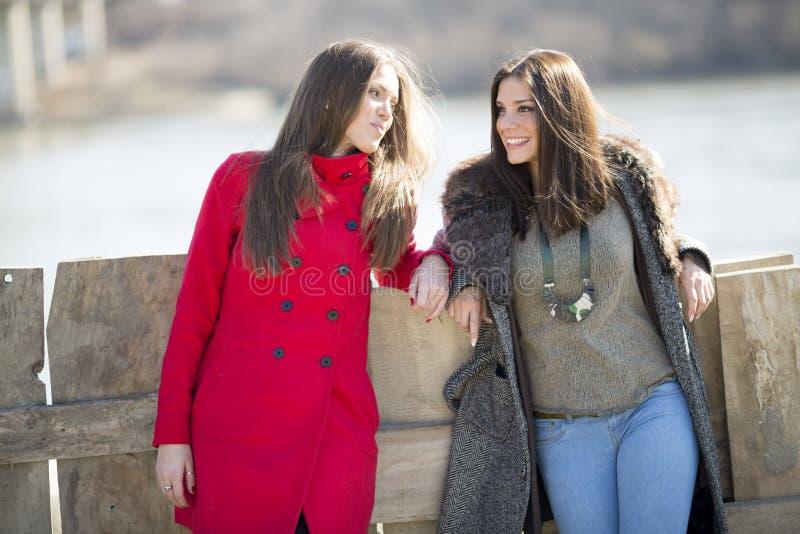 Twee jonge vrouwen die zich naast omheining, één van hen in een rood bevinden stock afbeeldingen