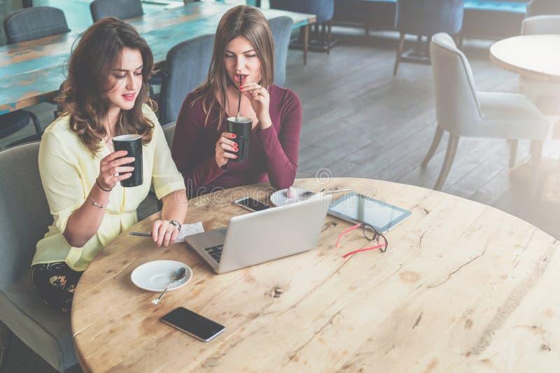 Twee jonge vrouwen zitten bij ronde houten lijst in koffie, het drinken koffie en het bekijken laptop het scherm stock afbeeldingen