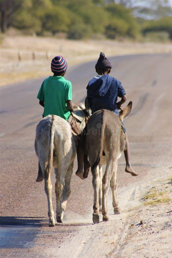 Twee jongens die ezels in Afrika berijden stock fotografie