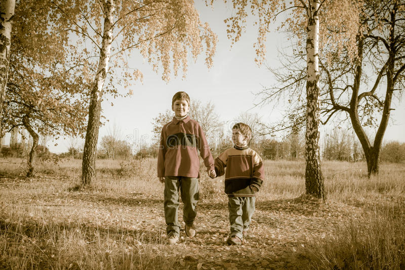 Twee jongens die samen op de herfstpark lopen royalty-vrije stock afbeelding
