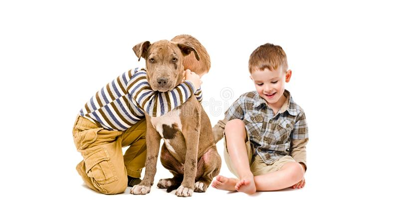 Twee jongens en een leuke stier van de puppykuil royalty-vrije stock foto
