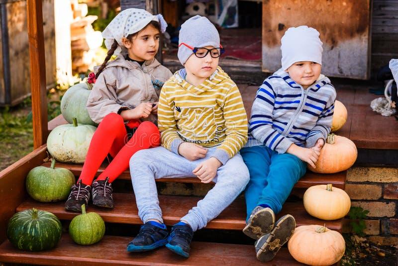 Twee jongens en een meisjeszitting op de portiek naast pompoenen stock fotografie