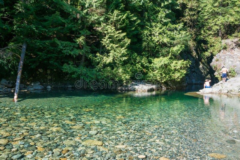 Twee jongens nemen een zwemtocht in het water van lynn canyon in Noord-Vancouver, Canada royalty-vrije stock fotografie