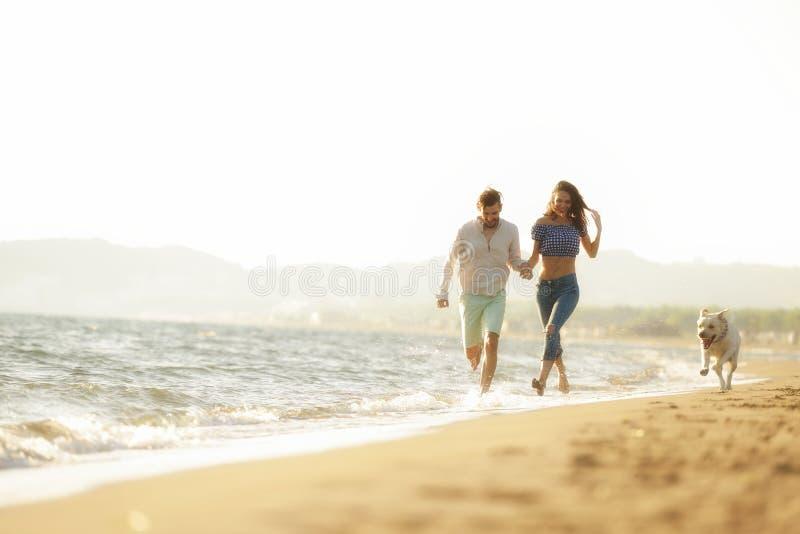 Twee jongeren die op het strand lopen die en vast met hond kussen houden stock fotografie