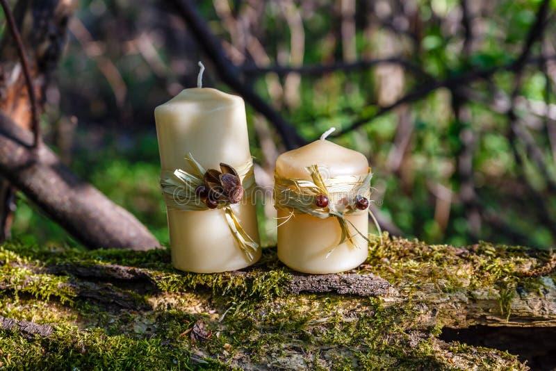 Twee kaarsen op oude login het bos stock fotografie