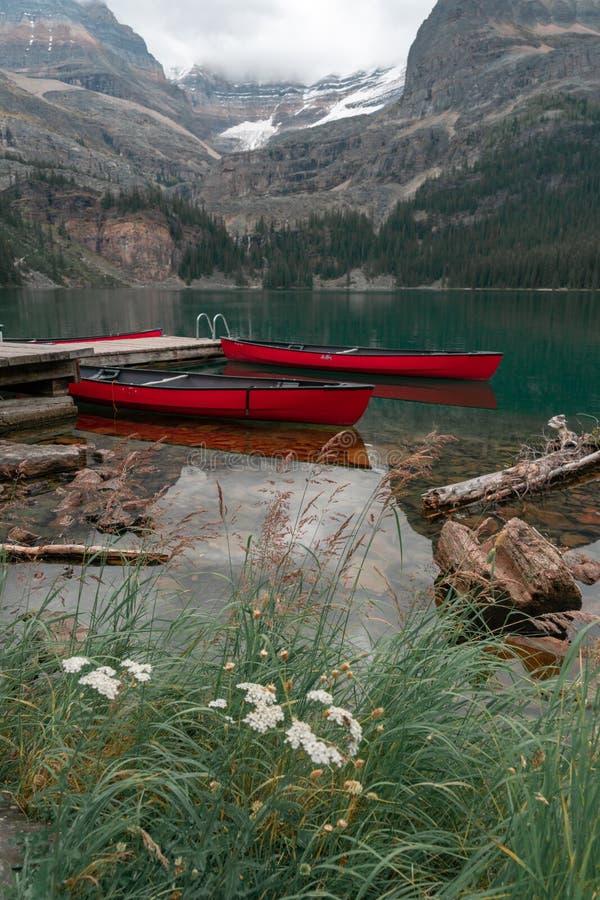 Twee kano's die op gebruik in de Canadese Rotsachtige Bergen in Yoho National Park wachten stock foto