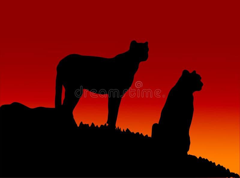 Twee katten stock illustratie