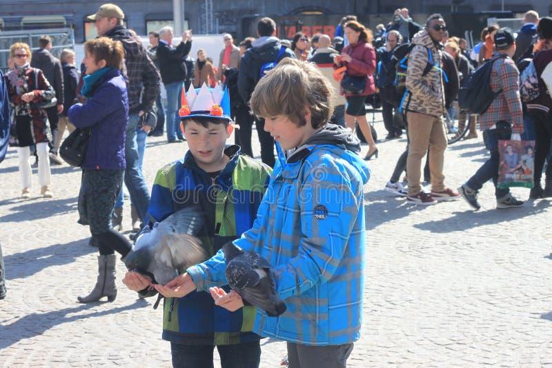 Twee kerels die voedende duiven de dam in Amsterdam geven stock foto