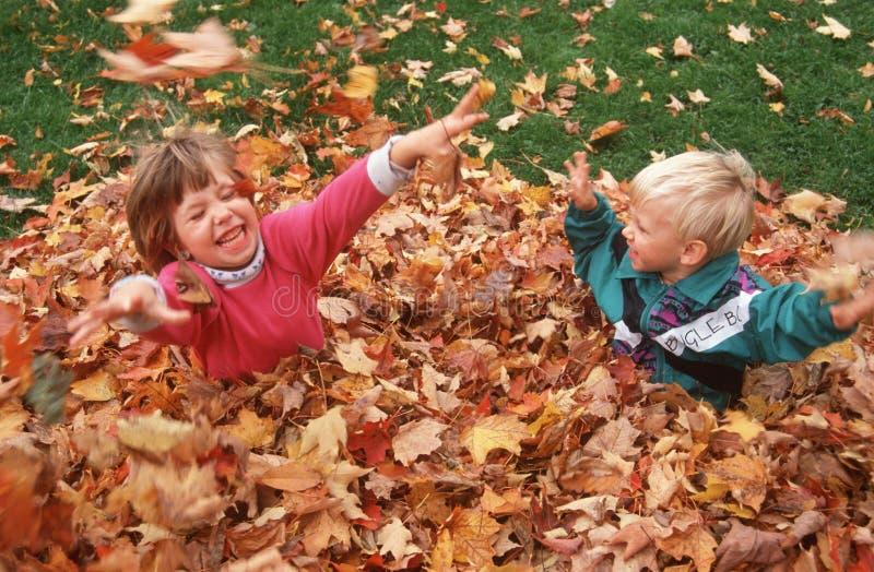 Twee kinderen die in dalingsbladeren spelen royalty-vrije stock afbeeldingen