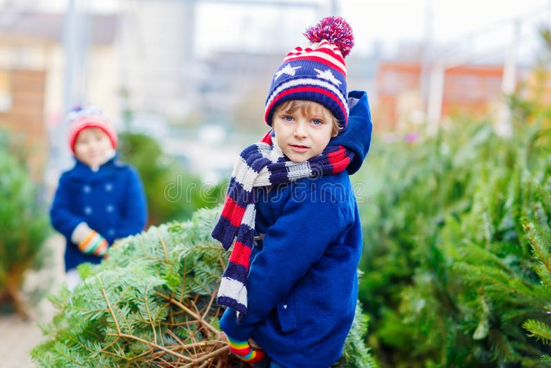 Twee kleine jong geitjejongens die Kerstmisboom in openluchtwinkel kopen stock afbeeldingen