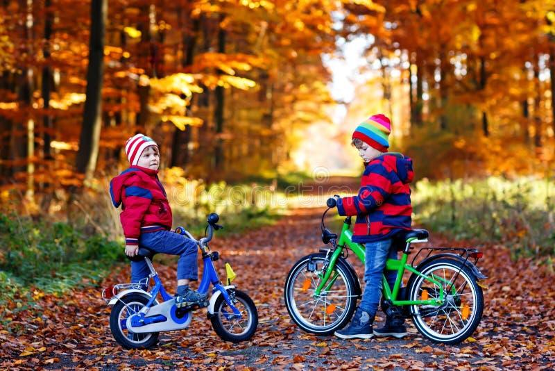 Twee kleine jonge geitjesjongens, beste vrienden die pret in de herfstpark hebben met fietsen stock foto