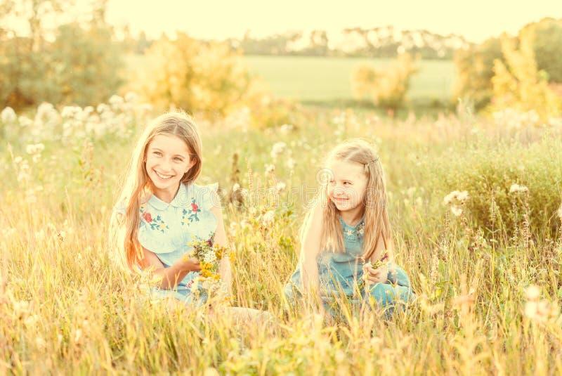 Twee kleine kronen van het zustersweefsel van bloemen royalty-vrije stock foto