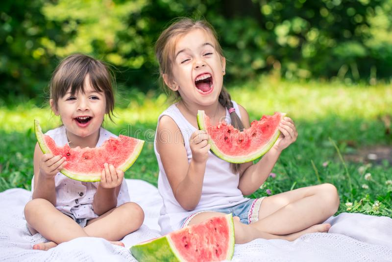 Twee kleine leuke meisjes die watermeloen in openlucht eten royalty-vrije stock afbeelding