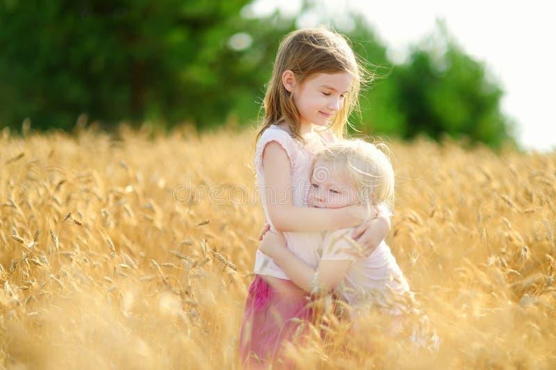 Twee kleine zusters die gelukkig op tarwegebied lopen stock fotografie