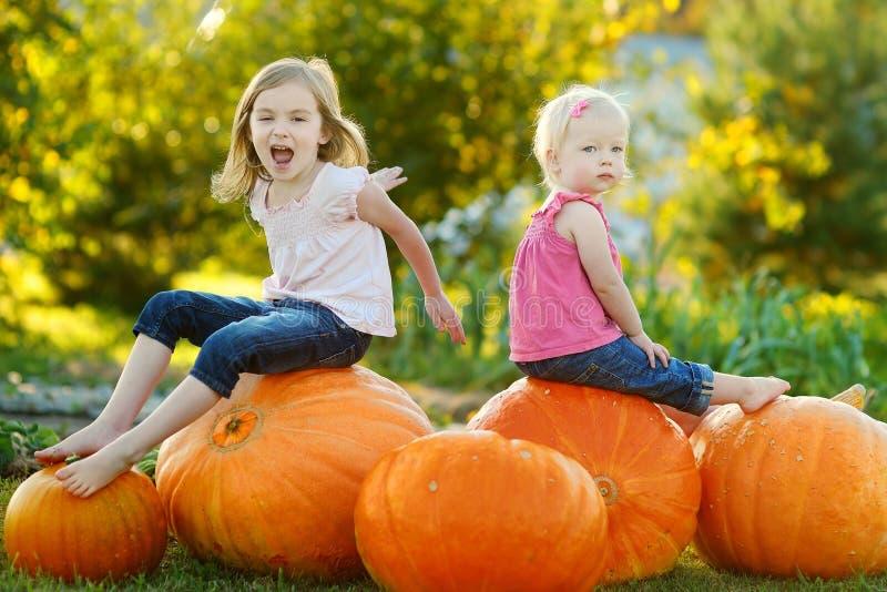 Twee kleine zusters die op reusachtige pompoenen zitten stock afbeeldingen