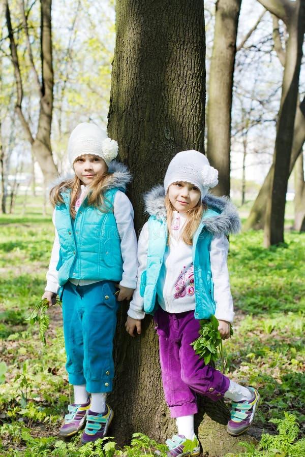 Download Twee Kleine Zusters In Park Stock Foto - Afbeelding bestaande uit gezicht, groen: 29507282