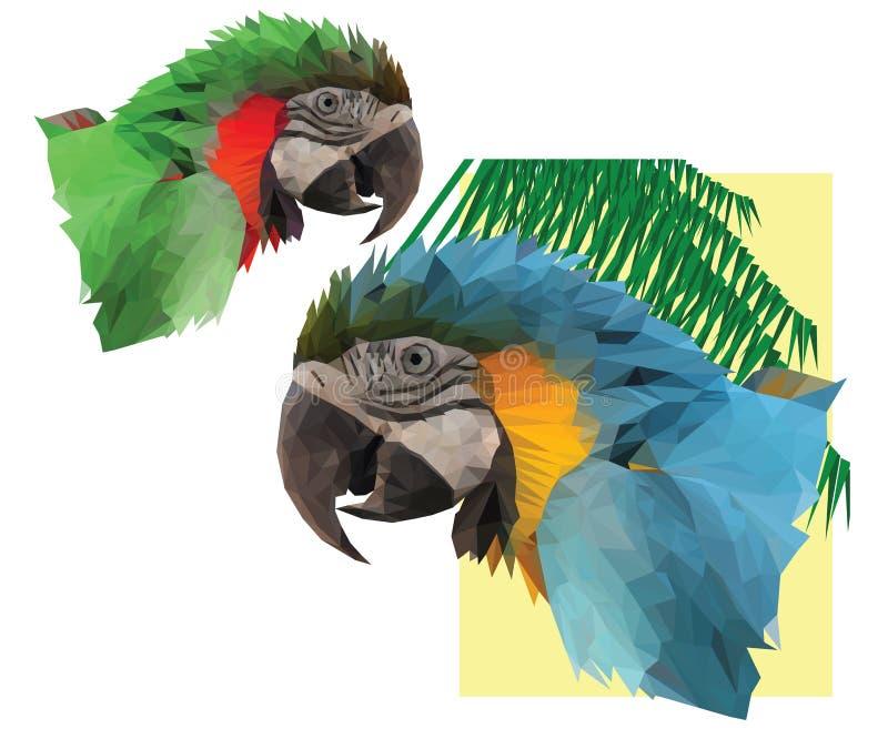 Twee kleurrijke arapapegaai ` s stock illustratie