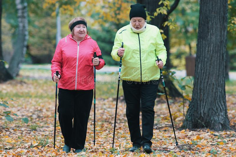 Twee kogelvisjasje geklede bejaarden zijn betrokken bij het Skandinavische lopen in het park in off-road Wijd geschoten stock afbeeldingen