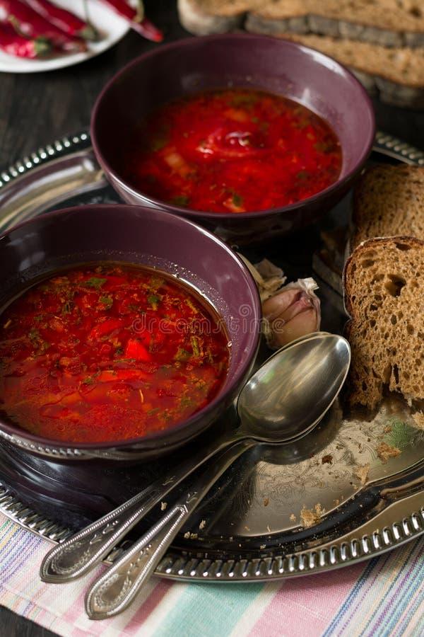 Twee kommen met traditionele Oekraïense plantaardige borscht royalty-vrije stock foto's