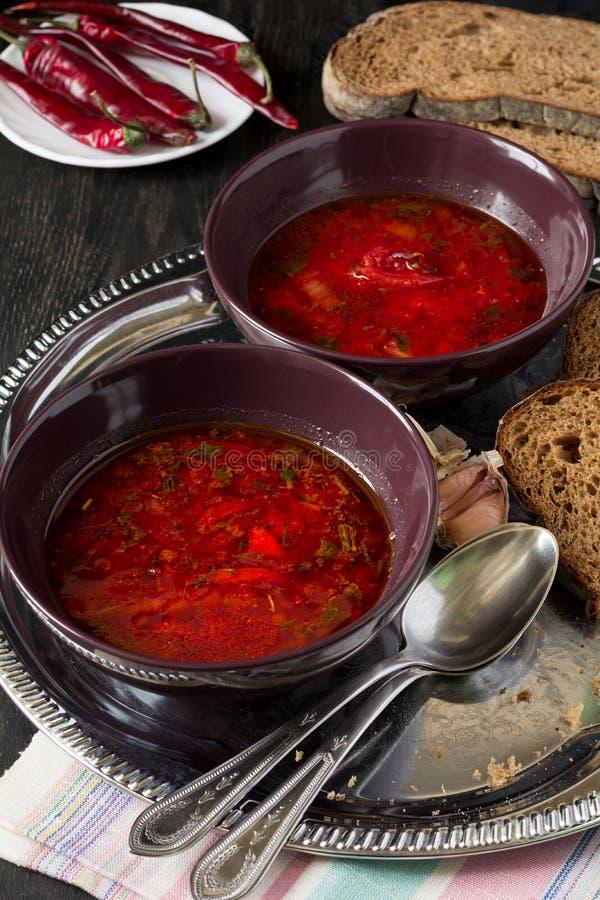 Twee kommen met traditionele Oekraïense plantaardige borscht stock foto