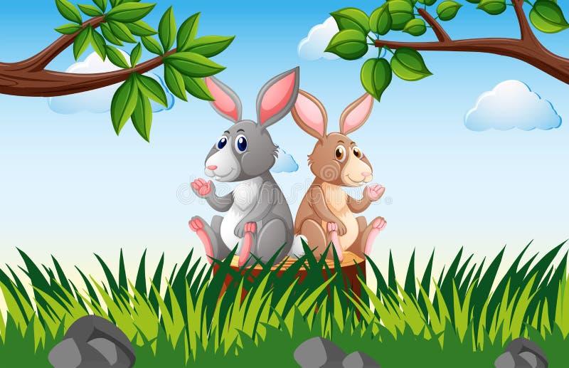 Twee konijnen op de stomp royalty-vrije illustratie